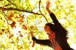 chute-des-feuilles.jpg