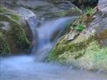 chute.ruisseau.jpg