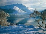 cime.lac.arbre.jpg