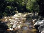 ruisseau.cailloux.jpg