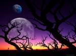 lune.ciel.mauve.jpg