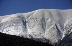 cimes.neige.jpg
